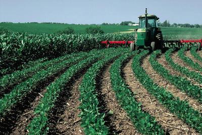 farming-251938-400-268